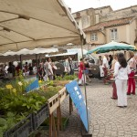 Pepete_2016_07_marché_Cluny-59